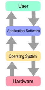 software type